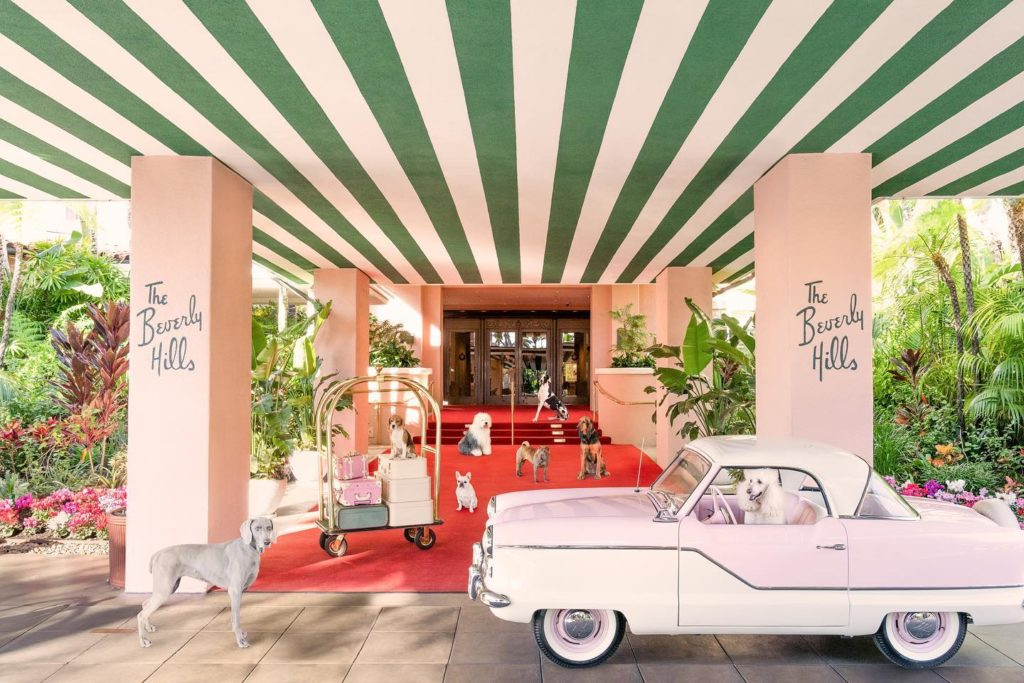 the_beverly_hills_hotel_california