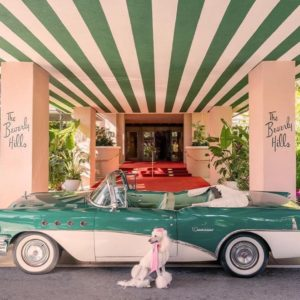 The Beverly Hills Hotel_Hotels Above Par