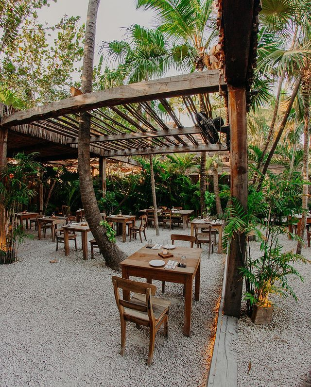 Wooden chairs and tables under a wood-thatched roof surrounded by palm trees among a clearing in a jungle.